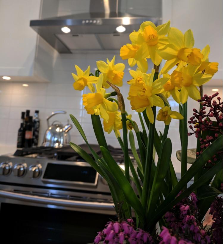 Gardens At Harvest Point Apartments Augusta Ga: Spring At Salisbury South! « MacLean Homes